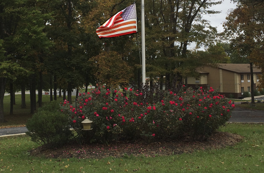 Outdoor Flag and Rose Bed